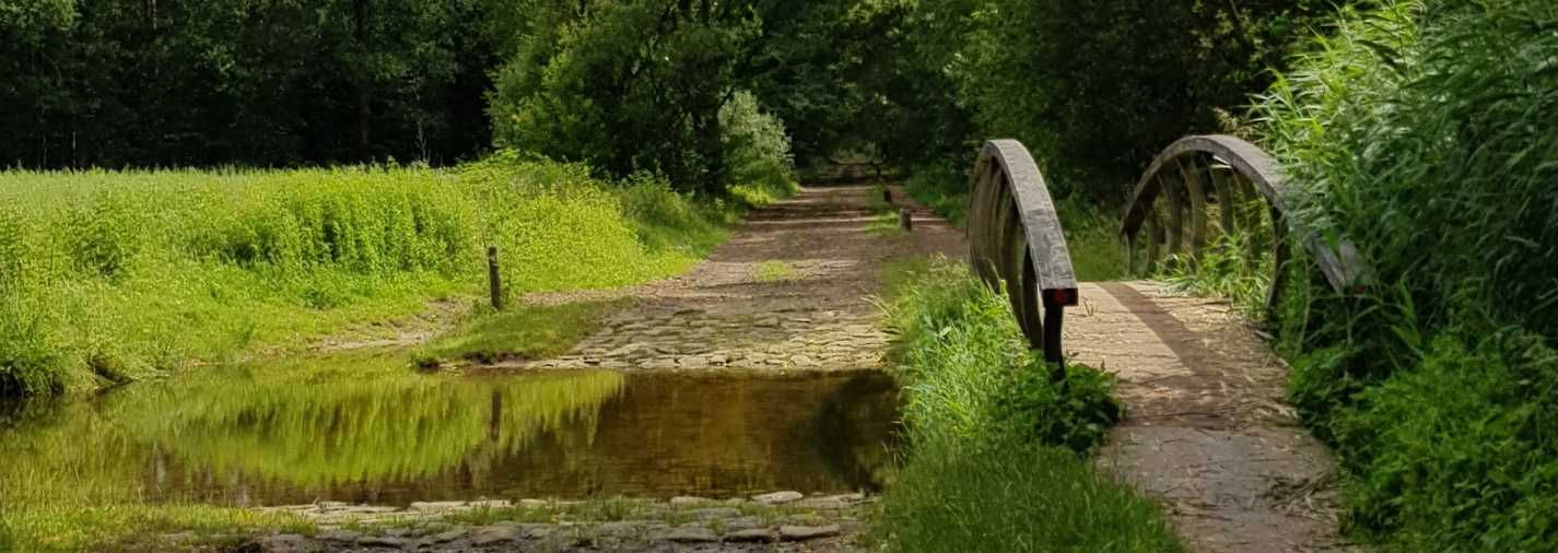 brug-bij-het-water